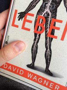 #8von12 - Mittagspause. Voller Bauch. Beine hoch. Keine Bilder vom Rasenmähen und Rechen. Lieber von meiner aktuellen Lektüre über Krankheiten.  Ärzte halt.