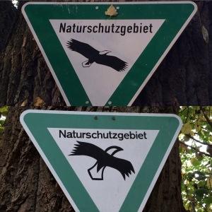 #11von12 - ... Spazieren im Naturschutzgebiet mit der Frage: Ist das ein Update? Ist das Kunst? Sind Weißkopfadler schon so weit dezimiert, dass...? Wieso sehe ich hier keine? Mir gefällt das alte Bild ja besser, aber vielleicht muß einfach mehr Symbolik her.